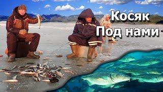 Бешенный клёв в заповеднике очень много рыбы Ловим рыбу на мормышки в Тавричанском Лимане
