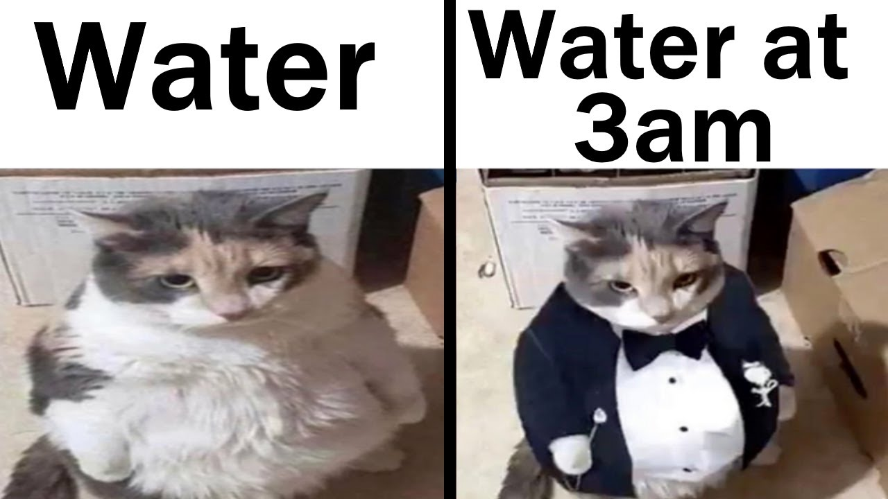 Memes That Made Me Refreshed