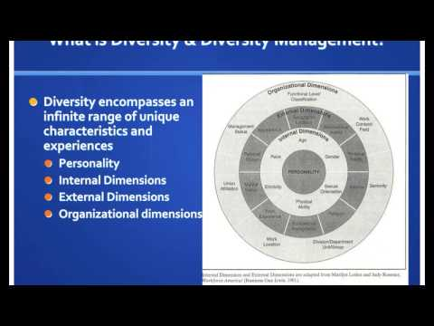 Introduction to Diversity and Diversity Management