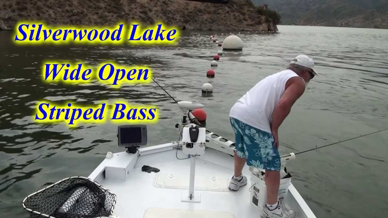 Silverwood lake stripers wide open the reel brothers for Silverwood lake fishing report