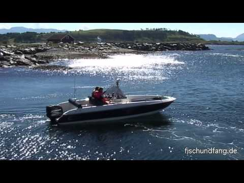 Von Lachs bis Leng in Sogn og Fjordane Norwegen