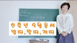 [역학 사주 ]신축년  범띠,말띠,개띠9월운세.현재대학교명리학수업진행하고있습니다~