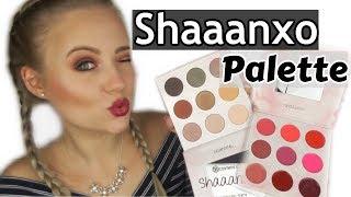 Shaanxoo Palette im Live Test   Blond_Beautyy