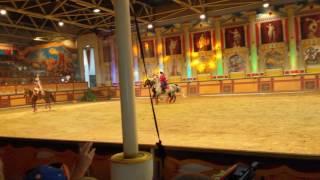 Конное Экстрим шоу в Абрау -Дюрсо Свадьба в Малиновке