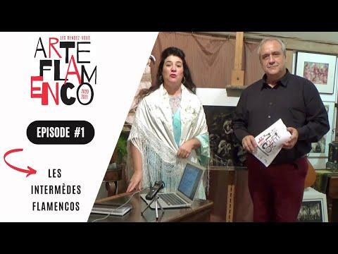 [ Épisode 1 ] Les Rendez-vous Arte Flamenco, c'est aussi des Intermèdes flamencos