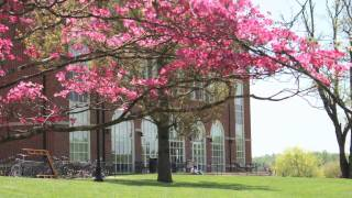 Happy New Year from Sweet Briar College