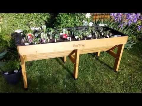 Vegetable Trug   Gardening   Grow Your Own