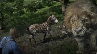 Red Dead Redemption 2 Catching All Circus Animals (Zebra.Lion.tiger)