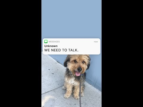 DOG BREAK UP TEXT | by txtstories