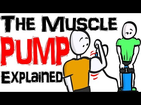 The Muscle Pump Does Chasing the Pump Help with Muscle Growth?