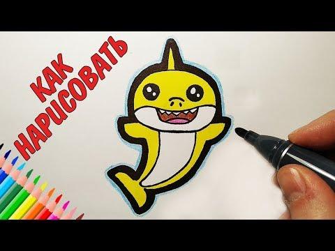 Как нарисовать милую акулу