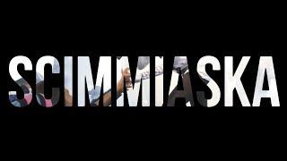 SCIMMIASKA - NO PROBLEM