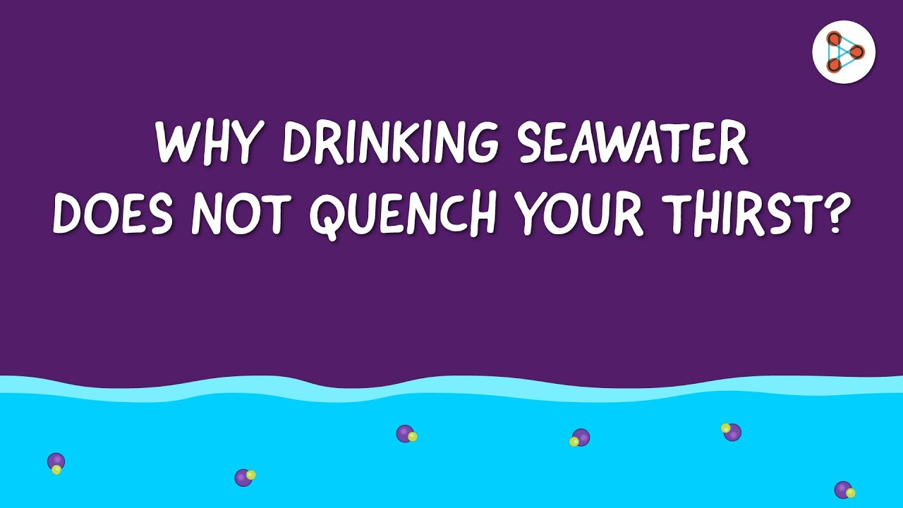 Why drinking seawater does not quench your thirst? | One Minute Bites | Don't Memorise