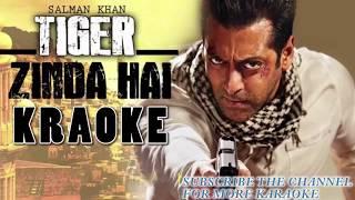 Tu Jo Kahe II Karaoke II Tiger Zinda Hai II Salman Khan II Katrina Kaif