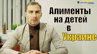советы адвоката по Алиментам для детей  Дмитрий Головко
