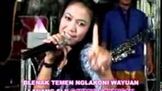 Video tarling.diana sastra-Ngadu telu. download MP3, 3GP, MP4, WEBM, AVI, FLV Oktober 2018