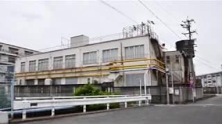 日光川周辺(大宮)
