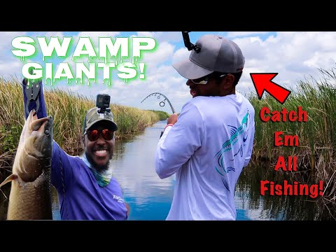 Catching Massive MUDFISH Deep In Florida SWAMP (FT. Catch Em All Fishing)