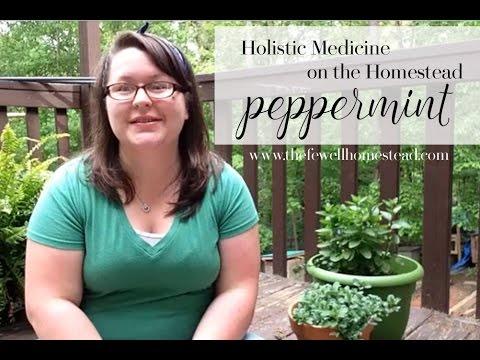 Holistic Medicine on the Homestead | Peppermint