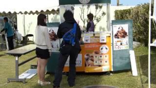 2013-02-01;日本ハムファイターズくにがみ球場を散歩してみました
