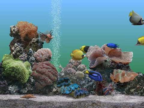 Apple Macintosh - SereneScreen Marine Aquarium Screen Saver