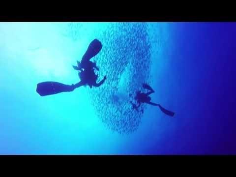Cocos Island 2016 Part2