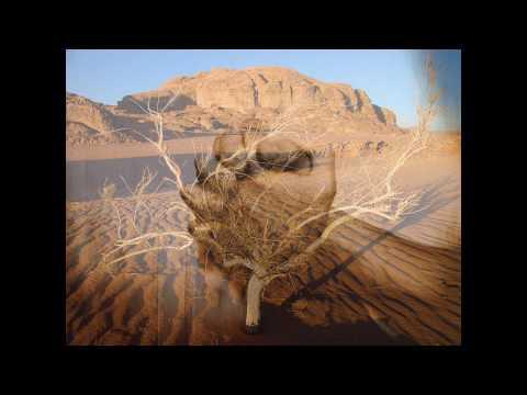 Judson Oliveira - Terra seca