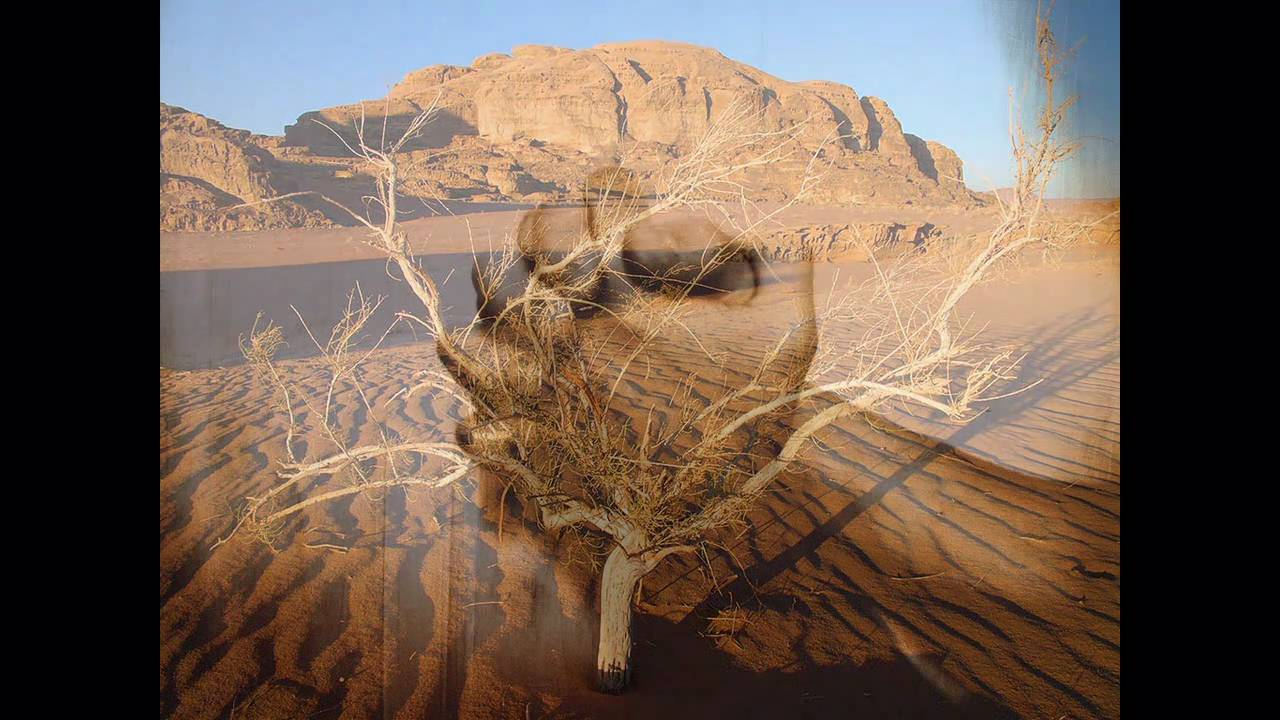 musicas gratis judson oliveira terra seca