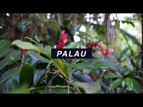 Palau (May 2017)