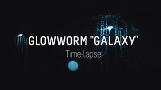 "The glowworm ""galaxy"" time-lapse"