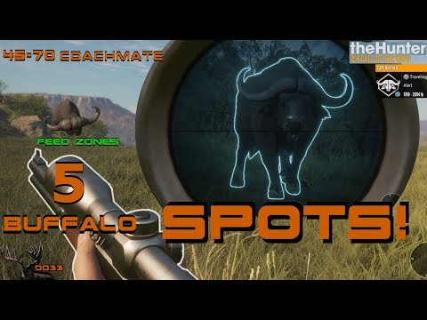 Finding the BEST SPOTS for Cape Buffalo!! (45-70 COACHMATE) Call of the WILD THEHUNTER 2018