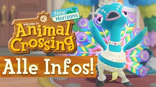 Alle INFOS zum NEUEN FESTIVAL UPDATE! » Animal Crossing New Horizons 🌴