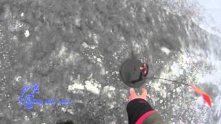 Рыбалка на Софиевском водохранилище, зима 2016