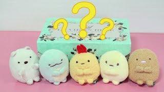 すみっこぐらし マジックボックス Sumikkogurashi Magic Box