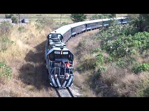Nuevo Tren Turisitico Tequila Express De Ferromex