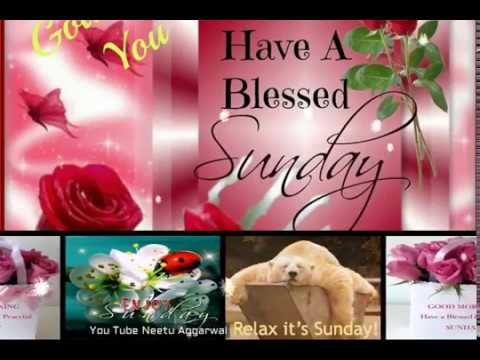 Happy Sunday Greetings/Quotes/Sms/Wishes/Saying/E Card/Wallpapers/ Whatsapp  Video