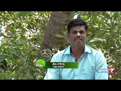 'Touch-me-not' plant which helps to cure swellings | Poovali | News7 Tamil