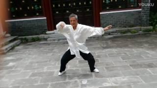 隋缘老师演练武当松溪太极103,式养身练气拳架