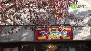 朝日通り商店街 - 地域情報動画サイト 街ログ