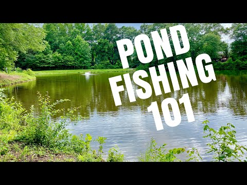 How To Fish Small Ponds- Bass Fishing Tips