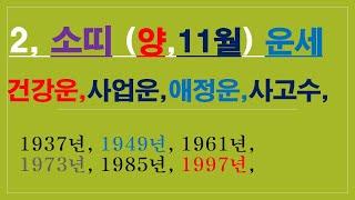 소띠,11월운세,건강운,사업운,금전운,애정운,사고수,010/4258/8864