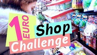 1 Euro Shop Challenge / Deko Challenge  / kinder_sein / frau_sein
