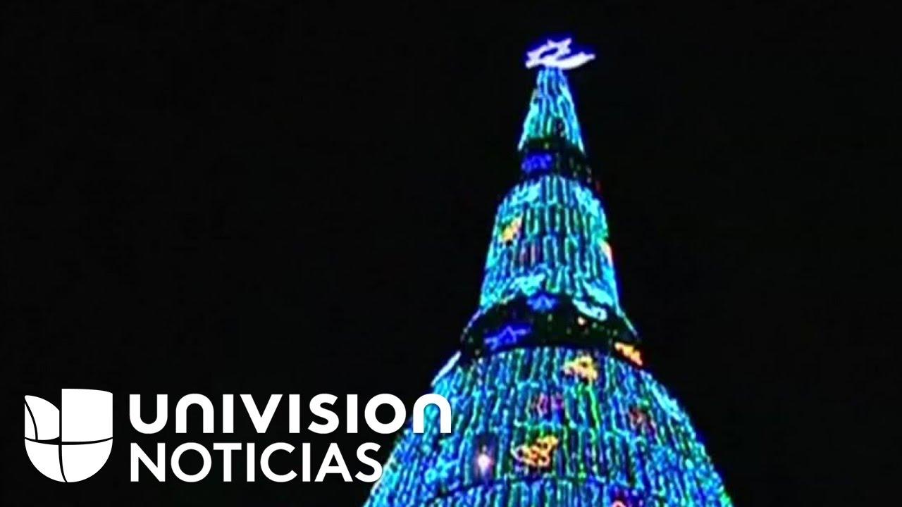 Árbol de Navidad que podría ser el más alto del mundo se inaugura en ...