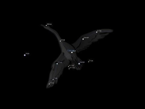 Как найти созвездие лебедь