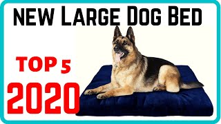 Top 5 Best Dog Beds For Large Dogs 2020 | New and Update Doggie Beds For Large Dogs.
