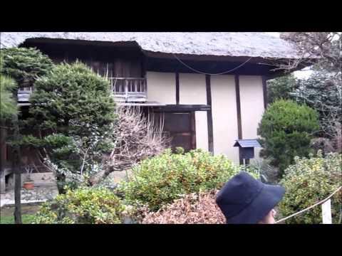 Japanese Antiques Market