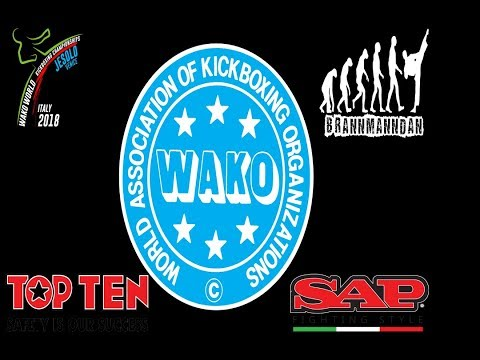 Tatami 3,4,5,6 Saturday WAAKO World Championships 2018
