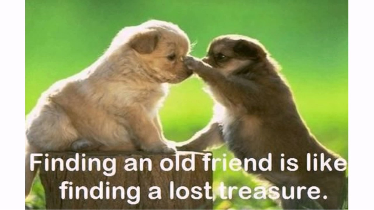 new site for finding old friends
