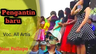 Pengantin Baru All Artis New Pallapa Live Perebg Babat Lamongan.mp3