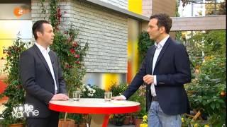 Minijobs: Rentenbeiträge sind Pflicht. Top-Thema bei ZDF